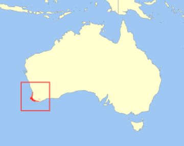 Geographic distribution of the Quokka (Setonix brachyurus)
