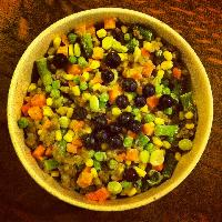 Vegan Dog Food Recipes