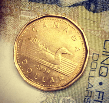 "Just got the ""loonie"" half of my ""loonies and twoonies"""