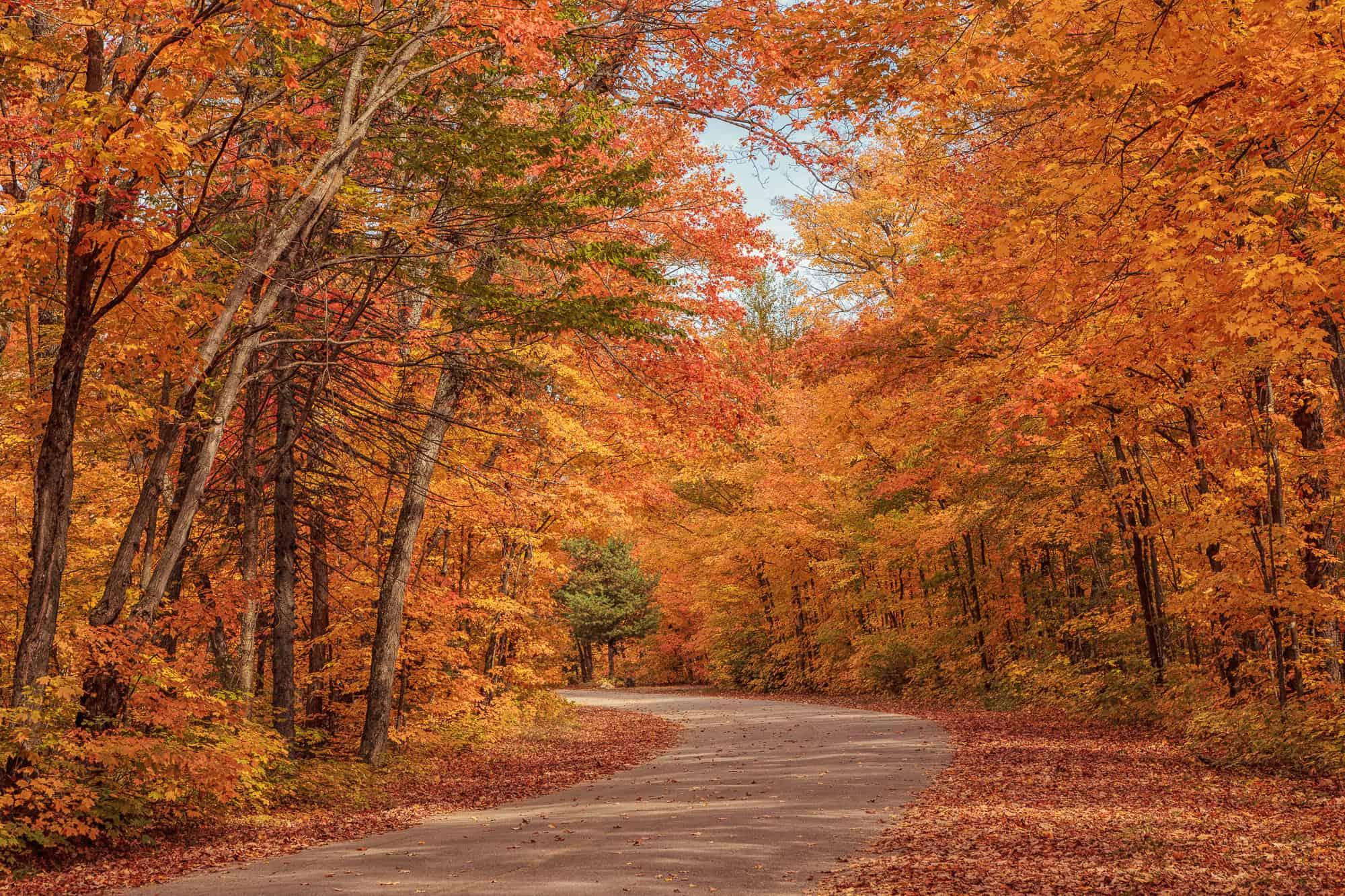 Algonquin Provincial Park: 3 Essential Hikes - Explore ...