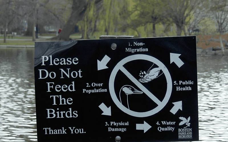Sign instructing people not to feed the ducks in Boston Commons