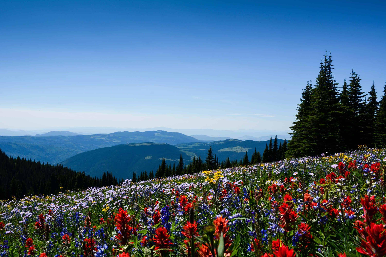 Summer Events At Sun Peaks Resort Explore Magazine