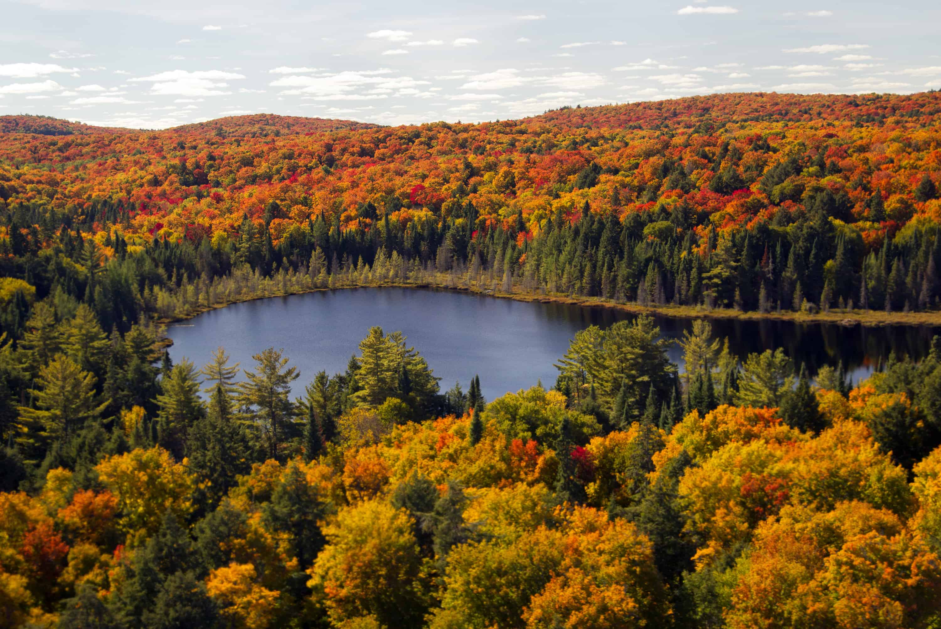 an analysis of the issue of tourism in canadas provincial parks on the case study of algonquin provi