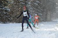 Sleeping Giant2015 Loppet Checkpoint 2