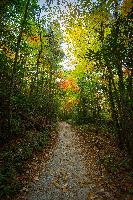 trail north carolina brevand