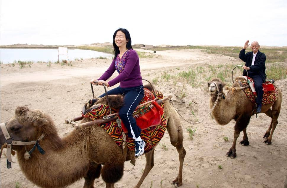 camel ride china