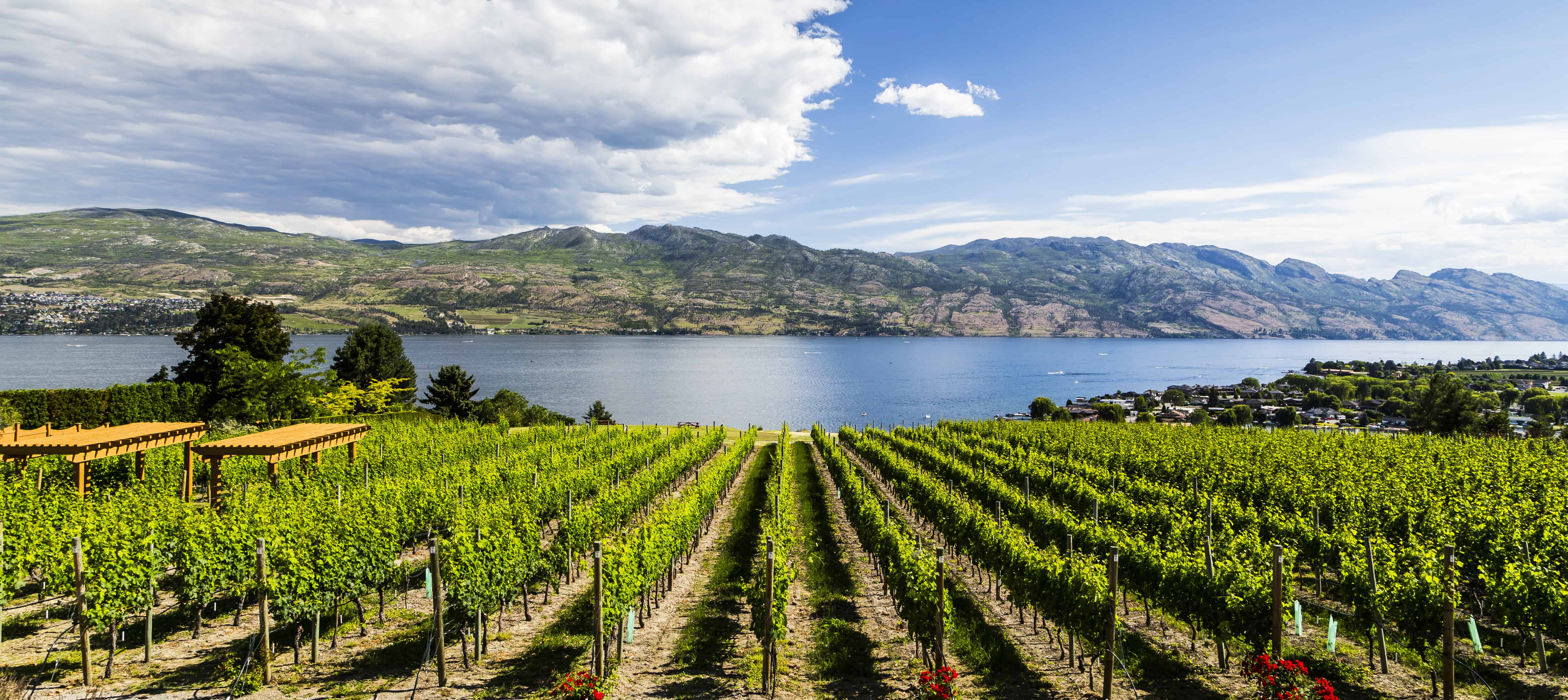 Top 15 Things To Do On Your Kelowna Vacation Canadian