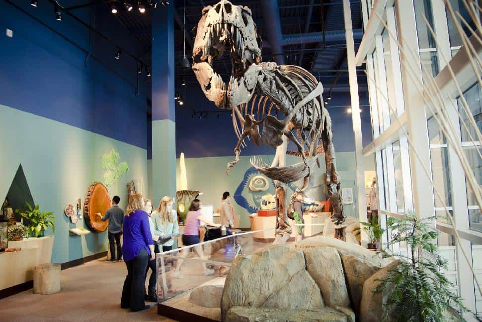 10 wonder filled and kid friendly activities in vancouver for Places to visit vancouver