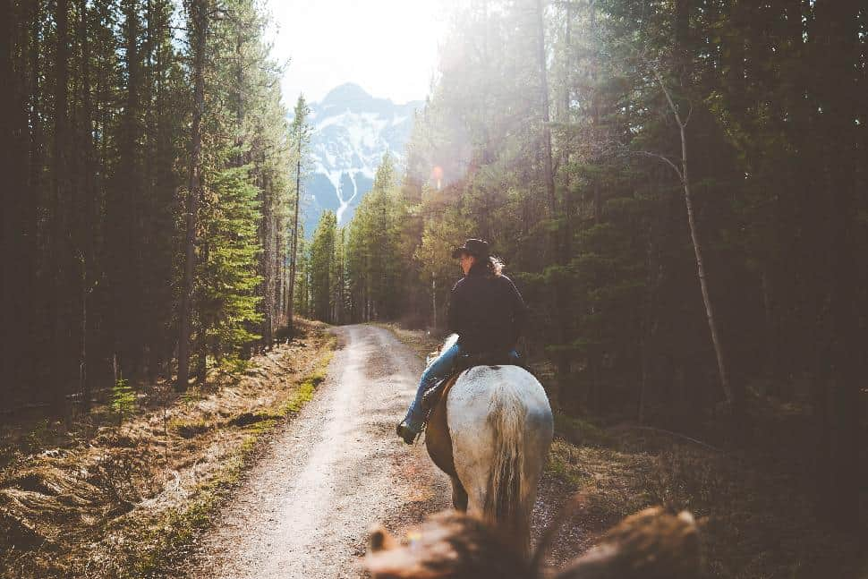 Horseback Riding Kananaskis