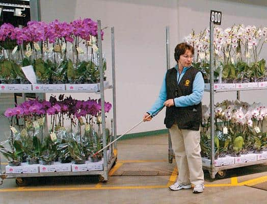 A United Flower Growers worker wheels out flowers for auction.Photo by Dina Goldstein.