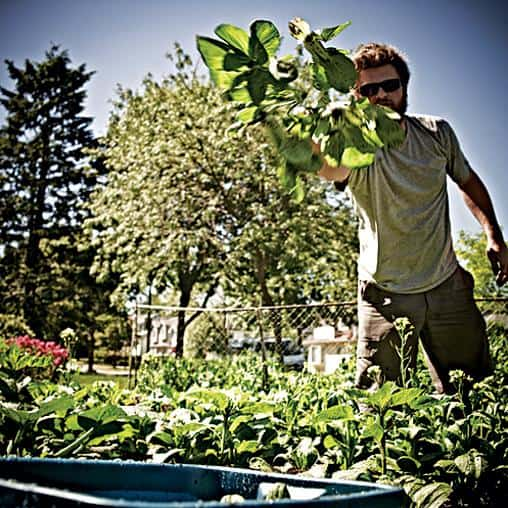 ICF partners with homeowners throughout the city to make urban agriculture a reality.