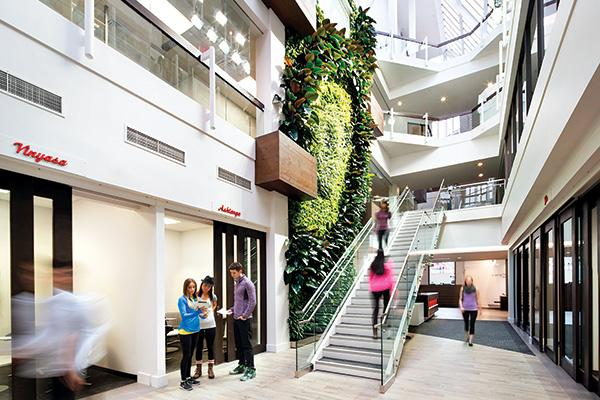 StrongLiving Tapestry Strong Br The Living Wall